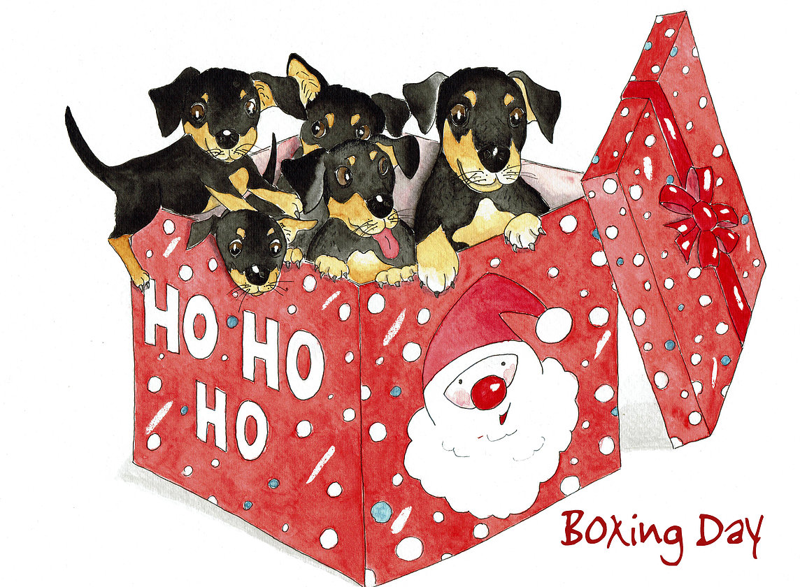 Australian Christmas Greeting Card ~ Boxing Day