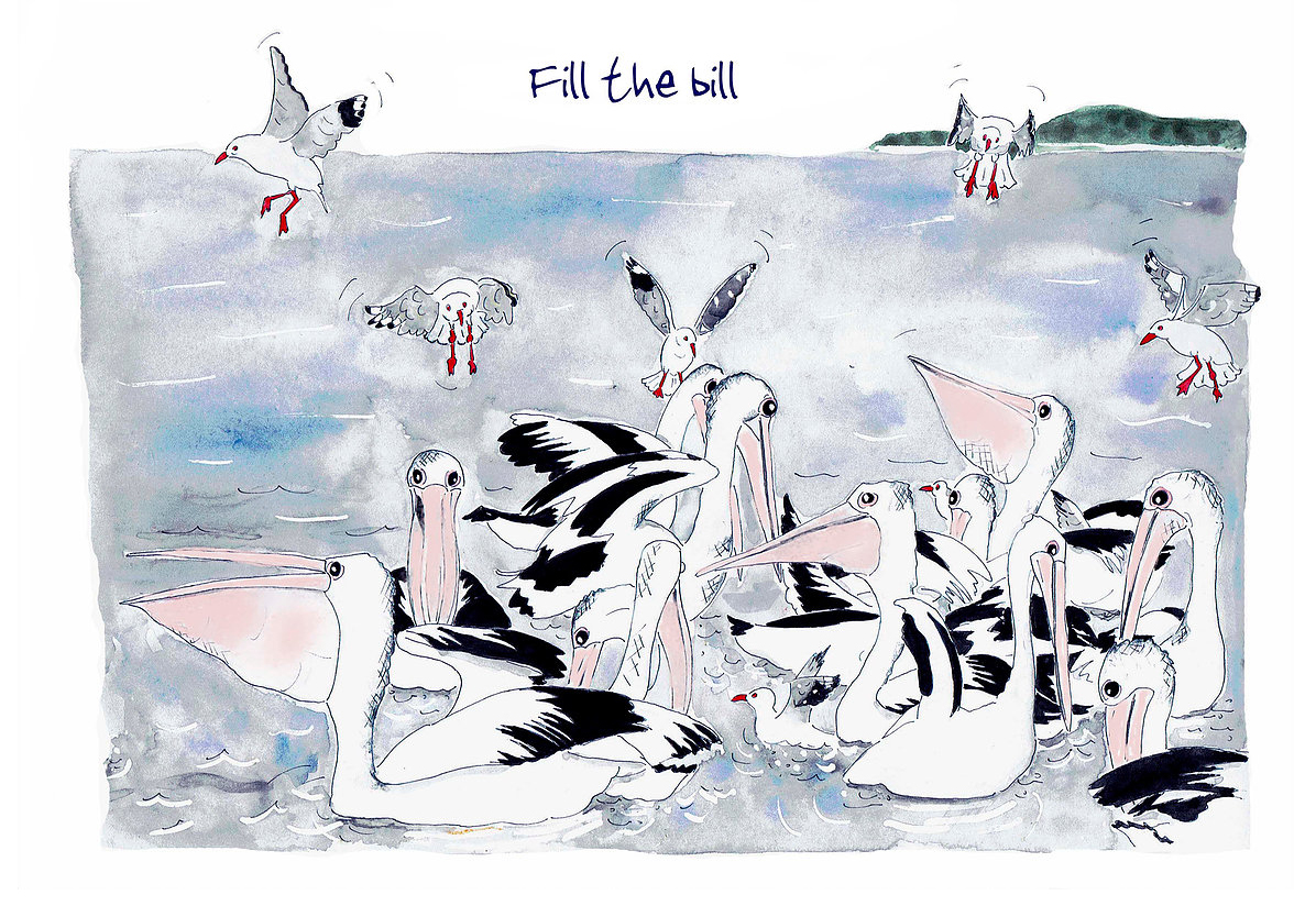 Australian Greeting Card ~ Fill the bill