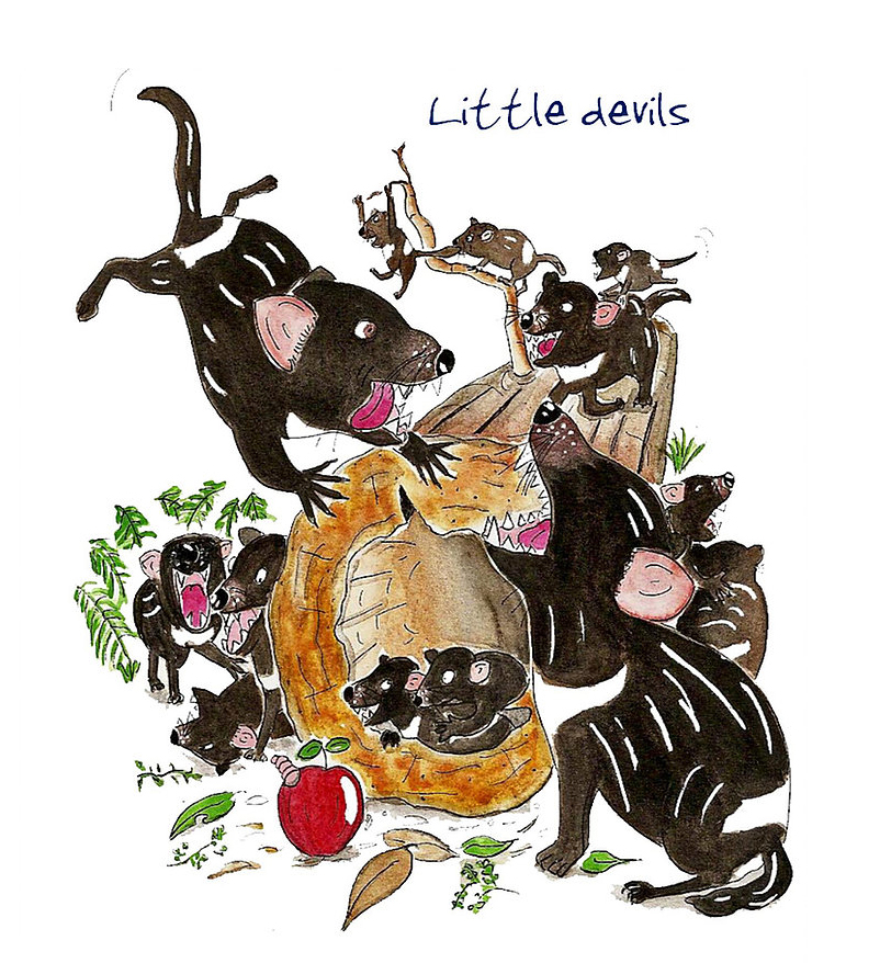 Australian Greeting Card ~ Little Devils