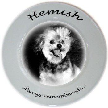 Personalised Porcelain Plate for your Pet