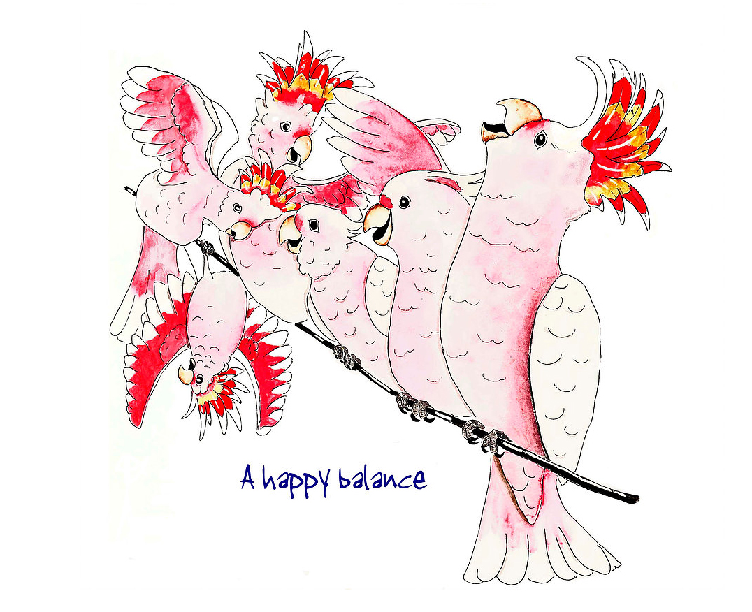 Australian Greeting Card ~ A Happy Balance
