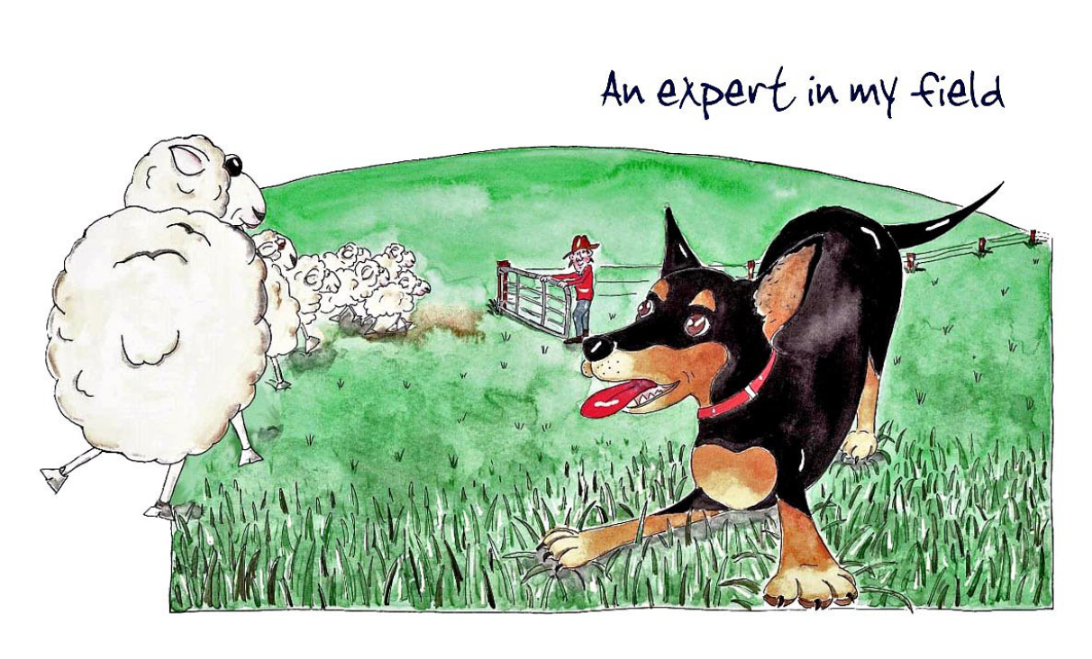 Australian Greeting Card ~ An expert in my field