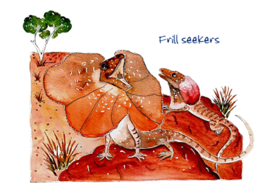 Australian Greeting Card ~ Frill Seekers