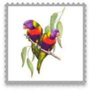 Personalised Christmas Bauble - Design U16 - Rainbow Lorikeet - Australian Bird