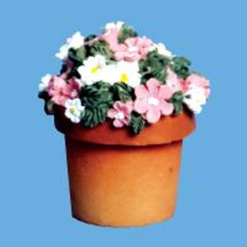 Miniature -- Daisies pink & white in a Terracotta Pots
